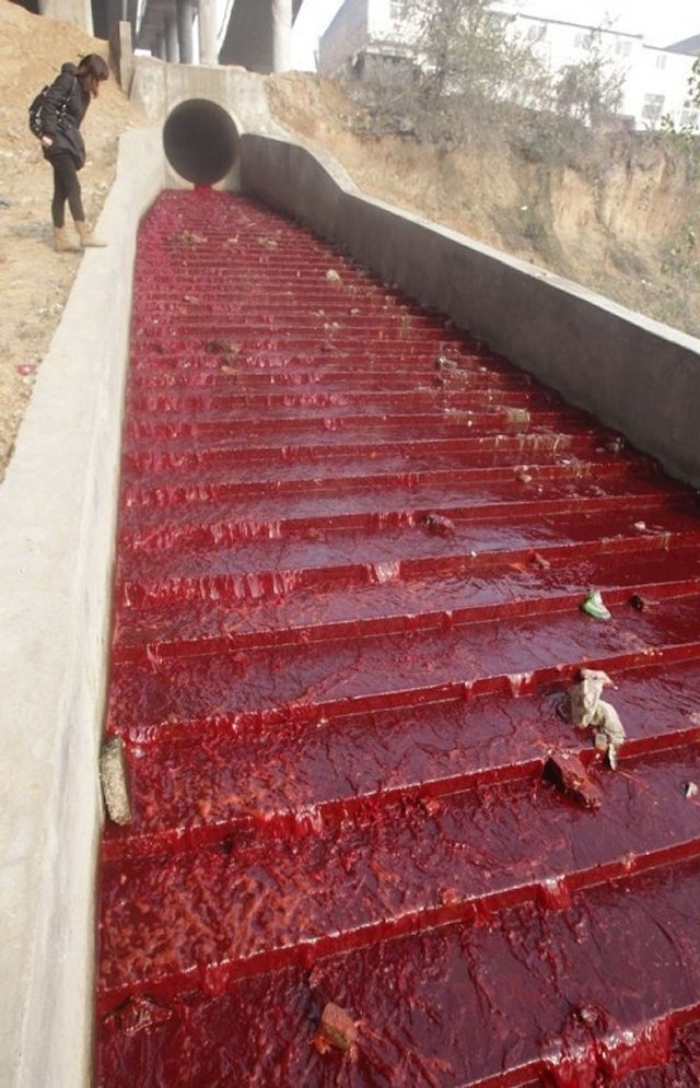 Река крови