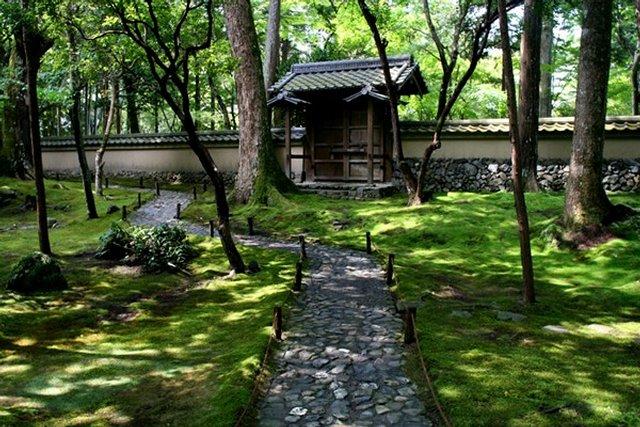 Сад чайной церемонии