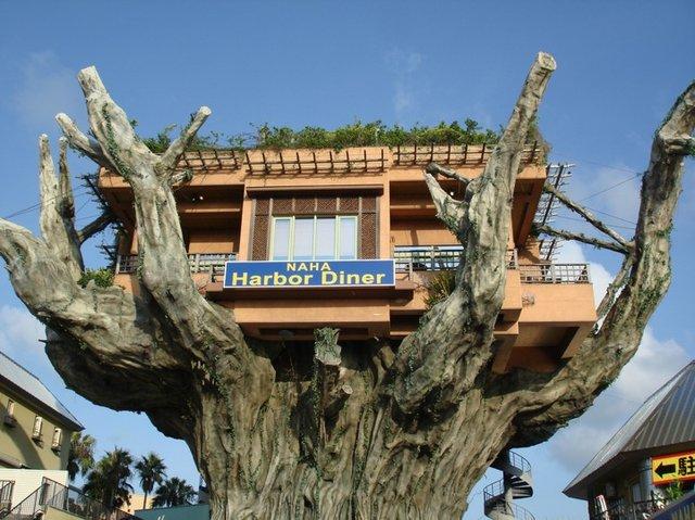 Рестран на дереве